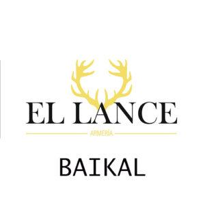 Baikal segunda mano